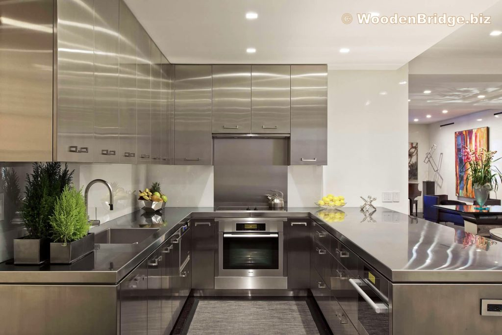 Modern Stainless Steel Kitchen Cabinets Ideas - 1710 x 1140